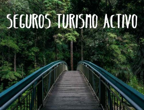Seguros turismo activo